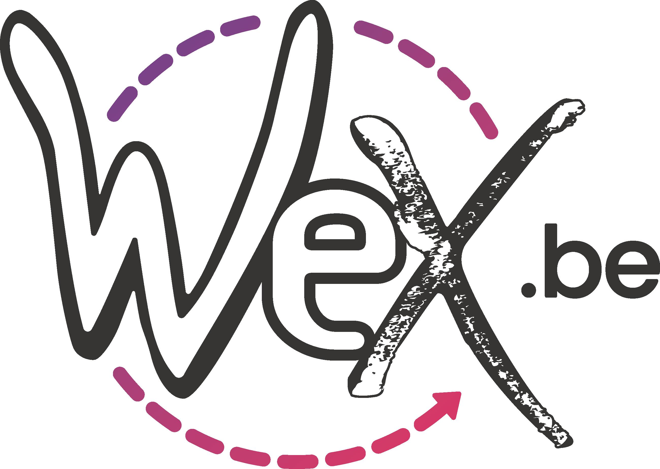 Wex_Logo2017_couleur.png